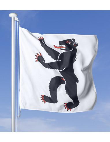 Fahne Appenzell Innerrhoden im Wind wehend am Fahnen-Mast, im Hintergrund blauer Himmel