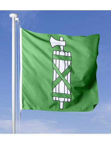 St. Galler Fahne im Wind wehend am Fahnen-Mast, im Hintergrund blauer Himmel