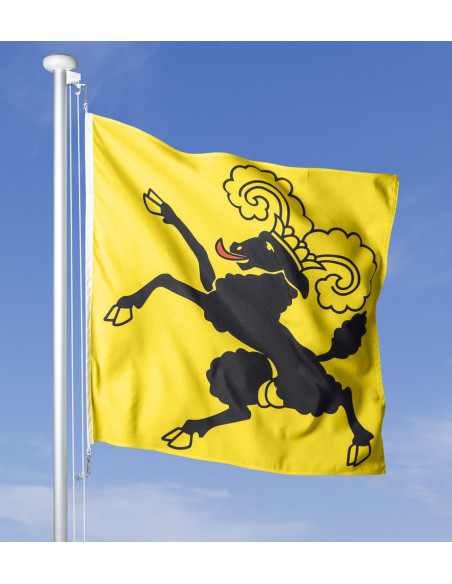 Drapeau schaffhousois flottant au vent sur le mât, ciel bleu en