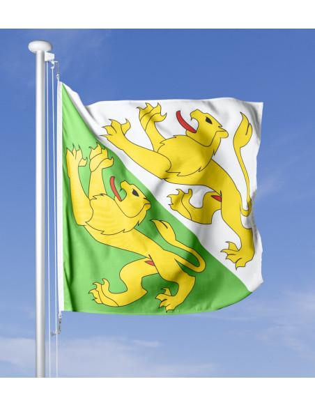 Thurgauer Fahne im Wind wehend am Fahnen-Mast, im Hintergrund blauer Himmel