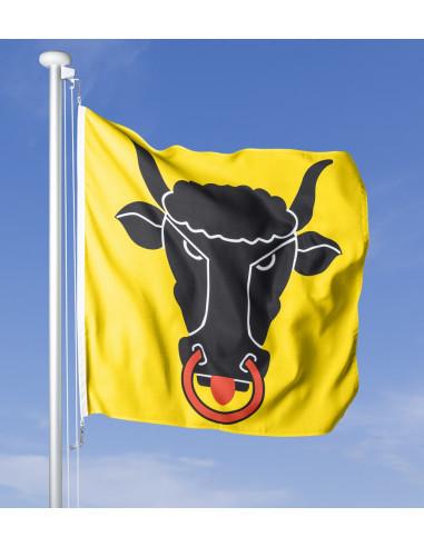 Urner Fahne im Wind wehend am Fahnen-Mast, im Hintergrund blauer Himmel