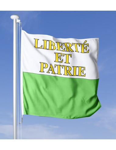 Waadländer Fahne im Wind wehend am Fahnen-Mast, im Hintergrund blauer Himmel